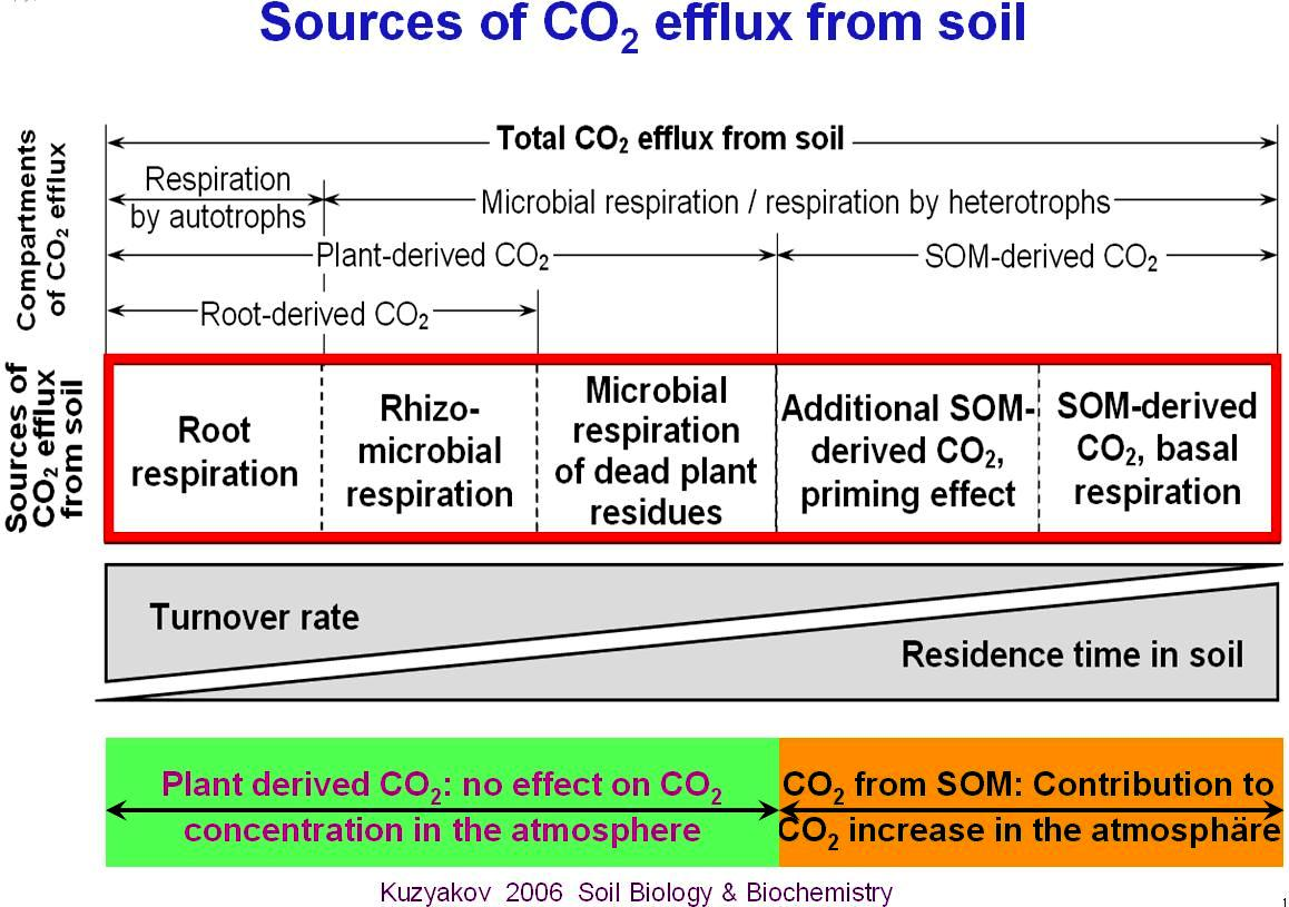 Soil science of temperate ecosystems georg august for Soil information in english